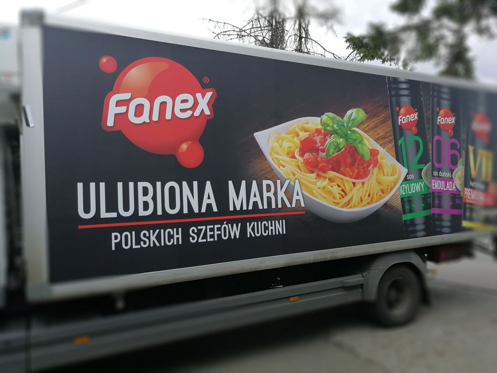fanex1.jpg